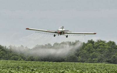 Glyphosate and GMO crops: what you should know